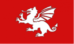 English White Dragon Flags
